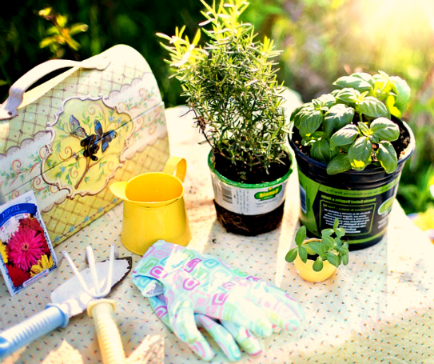 jardinage-outils